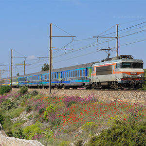 TGV Corailtéoz